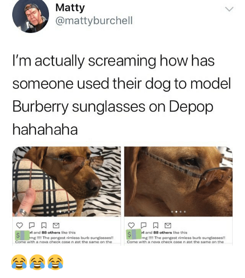 matty: Matty  @mattyburchell  I'm actually screaming how has  someone used their dog to model  Burberry sunglasses on Depop  hahahaha  and 88 others like this  and 88 others like this  mg Il!! The pengest rimless burb sunglasses!  Come with a nova check case n got the same on the  mg I!!! The pengest rimless burb sunglasses!  Come with a nova check case n Rot the same on the 😂😂😂
