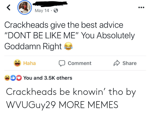 "Be Like Me: May 14  Crackheads give the best advice  ""DONT BE LIKE ME"" You Absolutely  Goddamn Right  Haha  Share  Comment  b You and 3.5K others Crackheads be knowin' tho by WVUGuy29 MORE MEMES"