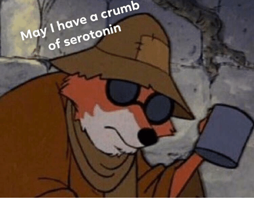 Serotonin, May, and I Have A: May I have a crumb  of serotonin