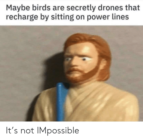 Birds, Drones, and Power: Maybe birds are secretly drones that  recharge by sitting on power lines It's not IMpossible