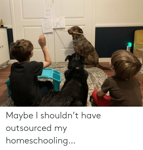 Shouldn: Maybe I shouldn't have outsourced my homeschooling…