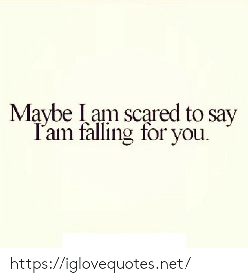 Net, You, and Iam: Maybe Iam scared to say  T'am falling for you. https://iglovequotes.net/
