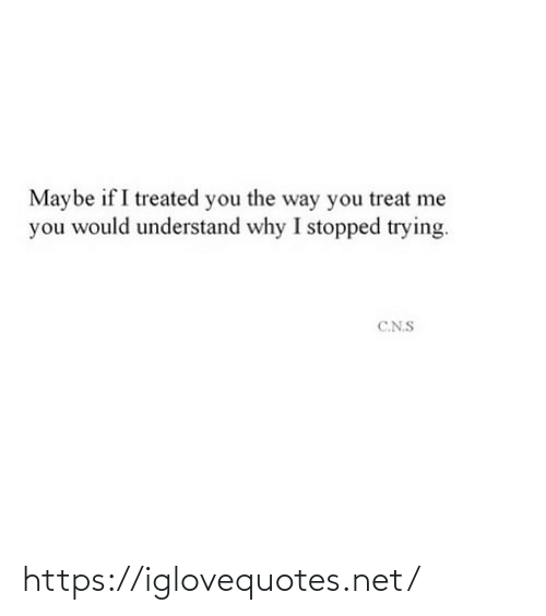 way: Maybe if I treated you the way you treat me  you would understand why I stopped trying.  C.N.S https://iglovequotes.net/