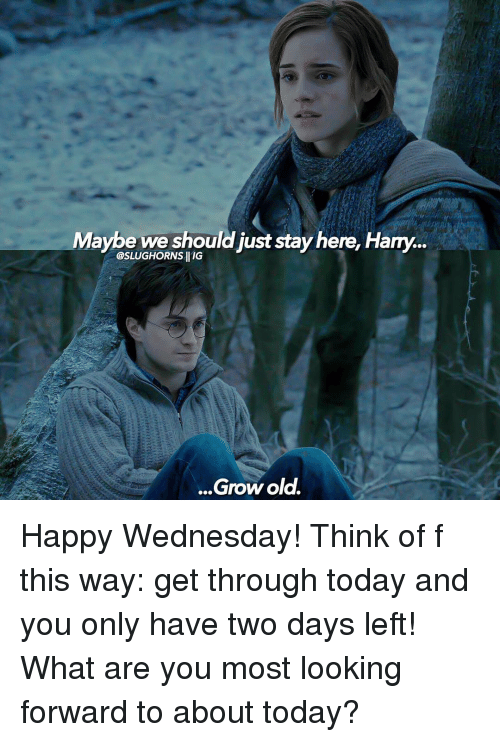 happy wednesday: Maybe we should just stay here. Hany...  @SLUGHORNSHIIG  Grow old. Happy Wednesday! Think of f this way: get through today and you only have two days left! What are you most looking forward to about today?