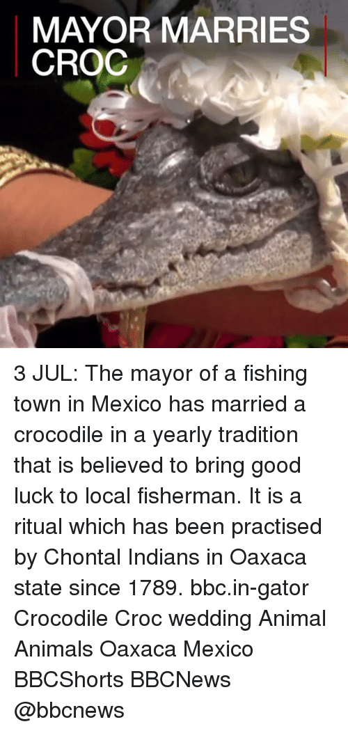 Animals, Memes, and Animal: MAYOR MARRIES  CROC 3 JUL: The mayor of a fishing town in Mexico has married a crocodile in a yearly tradition that is believed to bring good luck to local fisherman. It is a ritual which has been practised by Chontal Indians in Oaxaca state since 1789. bbc.in-gator Crocodile Croc wedding Animal Animals Oaxaca Mexico BBCShorts BBCNews @bbcnews