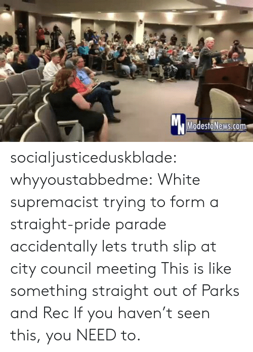 Tumblr, Blog, and White: Mc  ModestoNews.com socialjusticeduskblade: whyyoustabbedme:    White supremacist trying to form a straight-pride parade accidentally lets truth slip at city council meeting   This is like something straight out of Parks and Rec   If you haven't seen this, you NEED to.
