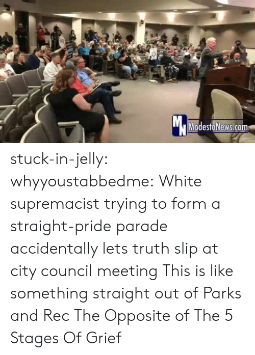 Straight Pride: Mc  ModestoNews.com stuck-in-jelly:  whyyoustabbedme:   White supremacist trying to form a straight-pride parade accidentally lets truth slip at city council meeting   This is like something straight out of Parks and Rec       The Opposite of The 5 Stages Of Grief