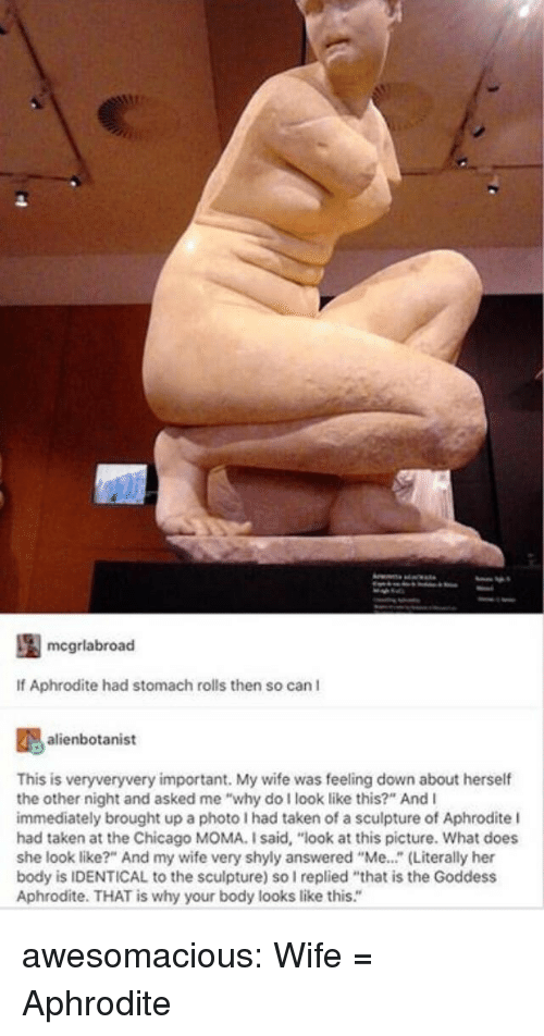 """Aphrodite: mcgrlabroad  If Aphrodite had stomach rolls then so can I  alienbotanist  This is veryveryvery important. My wife was feeling down about herself  the other night and asked me """"why do I look like this?"""" And I  immediately brought up a photo I had taken of a sculpture of Aphrodite l  had taken at the Chicago MOMA. I said, """"look at this picture. What does  she look like?"""" And my wife very shyly answered """"Me..."""" (Literally her  body is IDENTICAL to the sculpture) so I replied """"that is the Goddess  Aphrodite. THAT is why your body looks like this."""" awesomacious:  Wife = Aphrodite"""