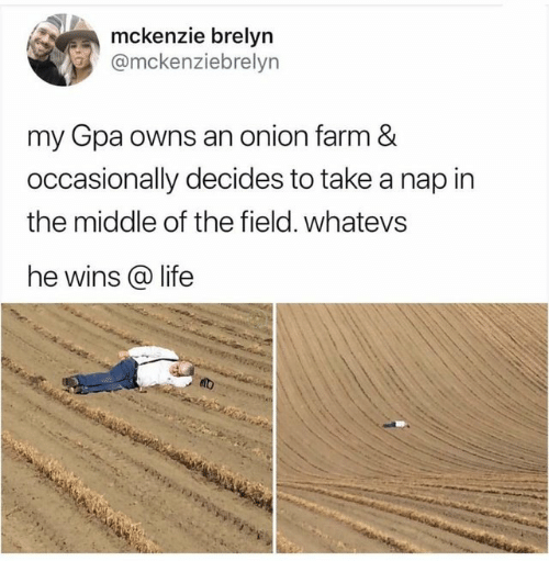 Whatevs: mckenzie brelyn  @mckenziebrelyn  my Gpa owns an onion farm &  occasionally decides to take a nap in  the middle of the field. whatevs  he wins life