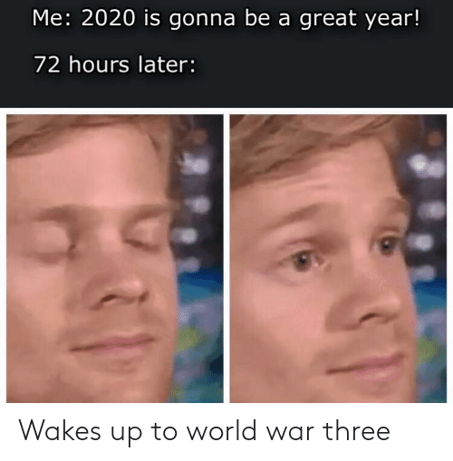 A Great: Me: 2020 is gonna be a great year!  72 hours later: Wakes up to world war three