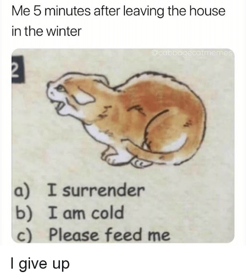 Winter, House, and Dank Memes: Me 5 minutes after leaving the house  in the winter  acabbagecatmeme  a) I surrender  b) I am cold  c) Please feed me I give up