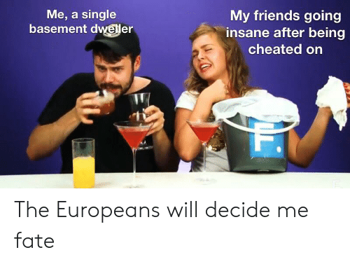Friends, Dank Memes, and Fate: Me, a single  basement dweller  My friends going  insane after being  cheated on The Europeans will decide me fate