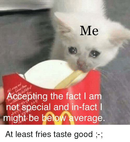 Good, Below, and Might: Me  Accepting the fact I am  not special and in-fact  might be below average At least fries taste good ;-;