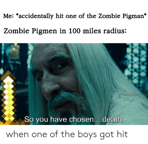 Death, Zombie, and Boys: Me: *accidentally hit one of the Zombie Pigman*  Zombie Pigmen in 100 miles radius:  TeAniMate  So you have chosen... death. when one of the boys got hit