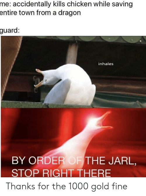 Chicken, Dragon, and Gold: me: accidentally kills chicken while saving  entire town from a dragon  guard:  inhales  BY ORDER OF THE JARL,  STOP RIGHT THERE Thanks for the 1000 gold fine