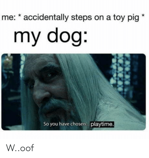 toy: me: * accidentally steps on a toy pig  my dog:  So you have chosen. playtime. W..oof