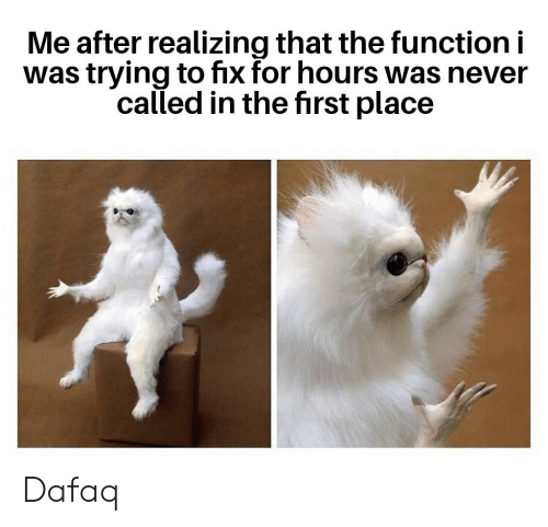 Never, Function, and First: Me after realizing that the function i  was trying to fix for hours was never  called in the first place Dafaq