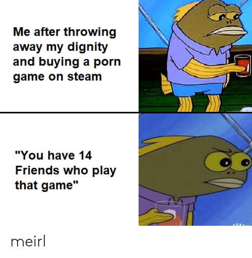 "steam: Me after throwing  away my dignity  and buying a porn  game on steam  ""You have 14  Friends who play  that game"" meirl"