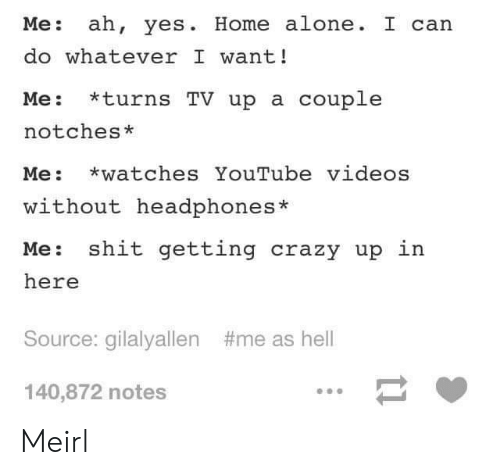 Youtube Videos: Me: ah, yes. Home alone. I can  do whatever I want!  Me: *turns TV up a couple  notches*  Me: watches YouTube videos  without headphones*  Me: shit getting crazy up in  here  Source: gilalyallen  #me as hell  140,872 notes Meirl