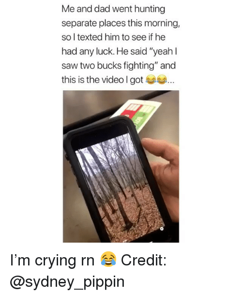 """Crying, Dad, and Memes: Me and dad went hunting  separate places this morning,  so l texted him to see if he  had any luck. He said """"yeah l  saw two bucks fighting"""" and  this is the video l gote I'm crying rn 😂 Credit: @sydney_pippin"""