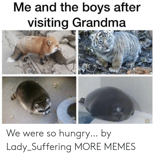Me And The Boys: Me and the boys after  visiting Grandma We were so hungry… by Lady_Suffering MORE MEMES