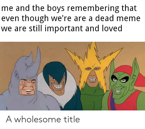 Meme, Wholesome, and Boys: me and the boys remembering that  even though we're are a dead meme  we are still important and loved A wholesome title