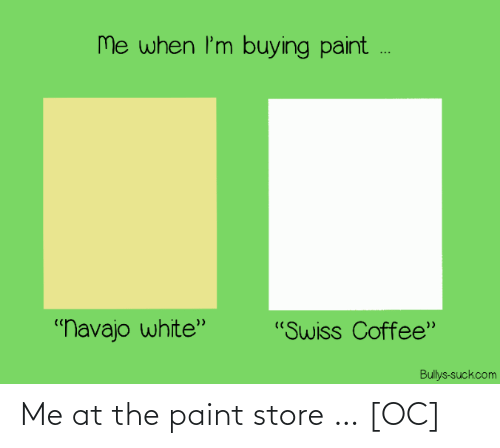 store: Me at the paint store … [OC]