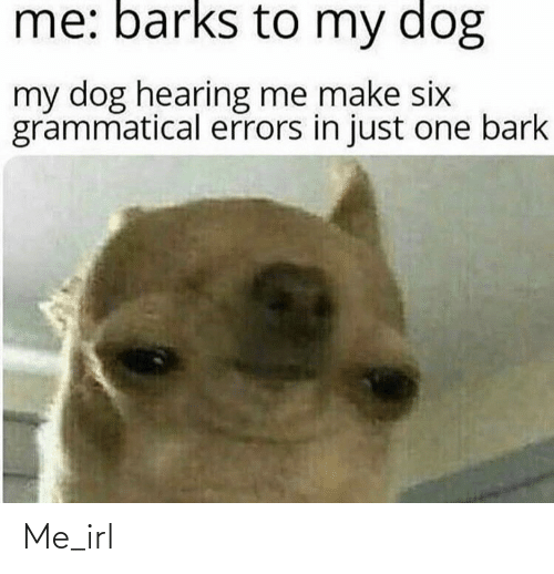 Errors: me: barks to my dog  my dog hearing me make six  grammatical errors in just one bark Me_irl