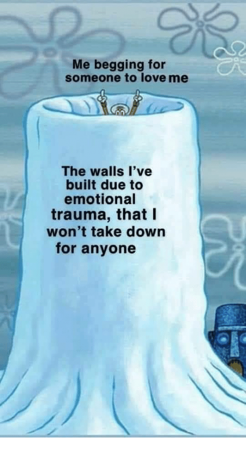 love me: Me begging for  someone to love me  The walls l've  built due to  emotional  trauma, that I  won't take down  for anyone meirl