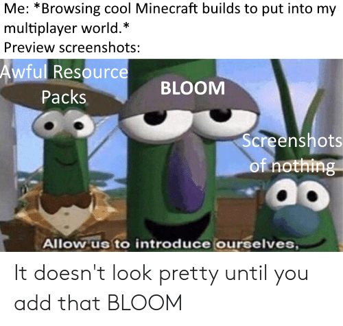 Minecraft, Cool, and World: Me: *Browsing cool Minecraft builds to put into my  multiplayer world.*  Preview screenshots:  Awful Resource  BLOOM  Packs  Screenshots  of nothing  Allow us to introduce ourselves, It doesn't look pretty until you add that BLOOM