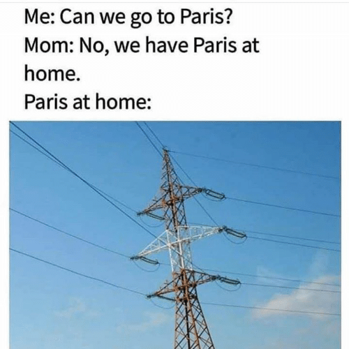 Memes, Home, and Paris: Me: Can we go to Paris?  Mom: No, we have Paris at  home.  Paris at home: