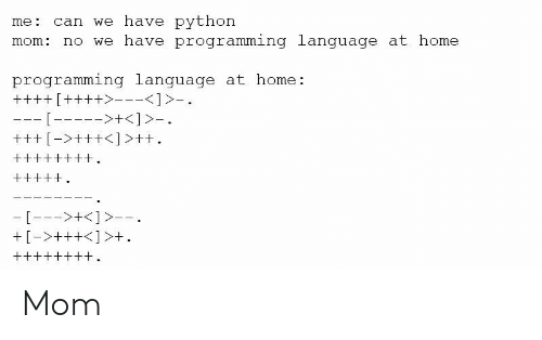 Home, Programming, and Mom: me: can we have python  mom: no we have programming language at home  programming language at home: Mom