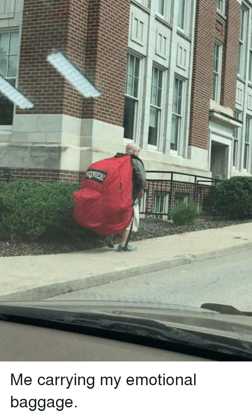 Dank, 🤖, and Carrying: Me carrying my emotional baggage.