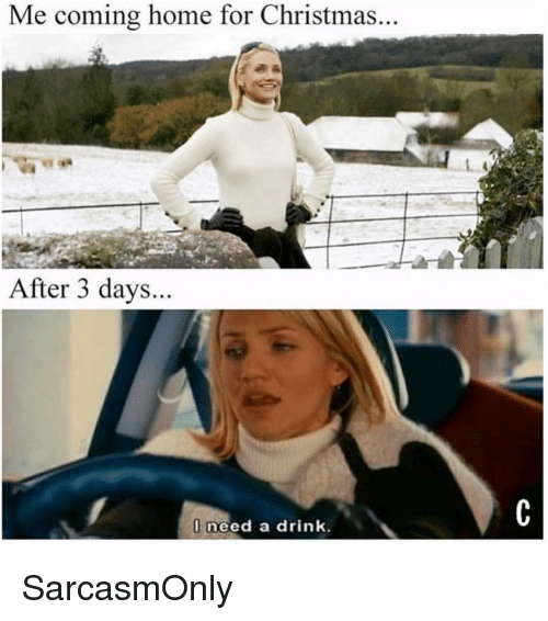 Christmas, Funny, and Memes: Me coming home for Christmas.  After 3 days.  need a drink. SarcasmOnly
