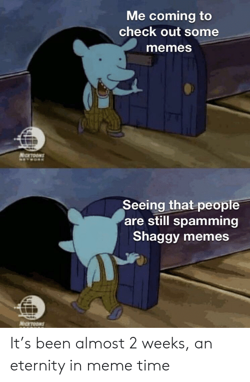 Meme, Memes, and Time: Me coming to  check out some  memesS  Seeing that people  are still spamming  Shaggy memes It's been almost 2 weeks, an eternity in meme time
