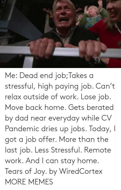 Less: Me: Dead end job;Takes a stressful, high paying job. Can't relax outside of work. Lose job. Move back home. Gets berated by dad near everyday while CV Pandemic dries up jobs. Today, I got a job offer. More than the last job. Less Stressful. Remote work. And I can stay home. Tears of Joy. by WiredCortex MORE MEMES