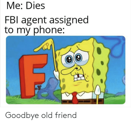 Fbl: Me: Dies  FBl agent assigned  to my phone: Goodbye old friend