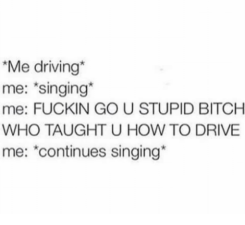 Bitch, Driving, and Memes: Me driving*  me: singing*  me: FUCKIN GO U STUPID BITCH  WHO TAUGHT U HOW TO DRIVE  me: *continues singing*