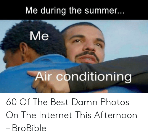 Summer Memes 2018: Me during the summer...  Me  Air conditioning 60 Of The Best Damn Photos On The Internet This Afternoon – BroBible