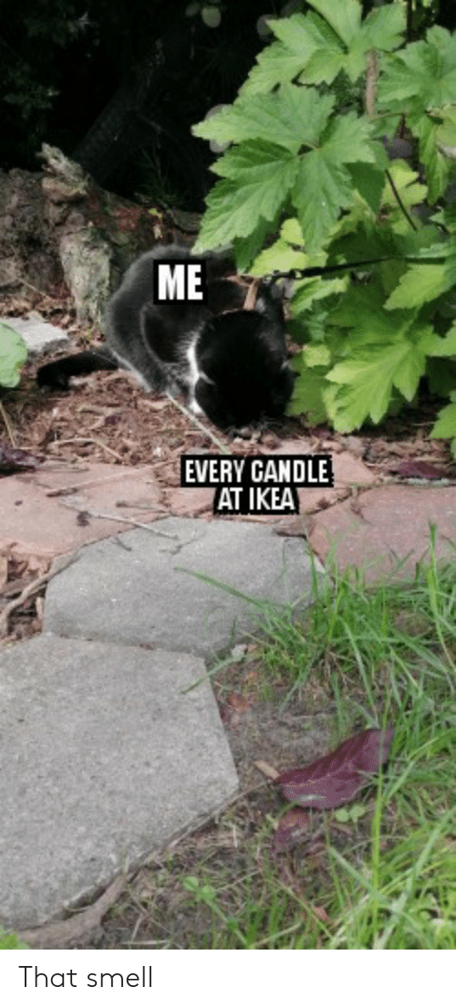 Candle: ME  EVERY CANDLE  AT IKEA That smell