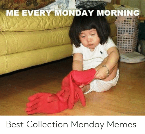 Memes, Best, and Monday: ME EVERY MONDAY MORNING  FunnyBeing co Best Collection Monday Memes