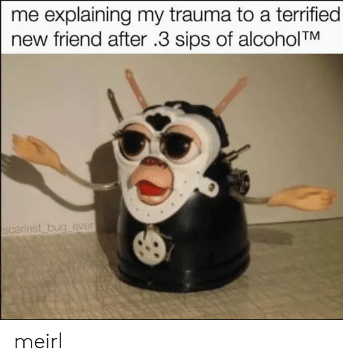 MeIRL, Sips, and Friend: me explaining my trauma to a terrified  new friend after .3 sips of alcoholTM  scariest bug ever meirl