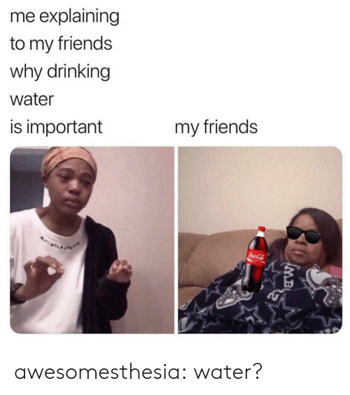 Drinking, Friends, and Tumblr: me explaining  to my friends  why drinking  water  my friends  is important  CocaCola awesomesthesia:  water?