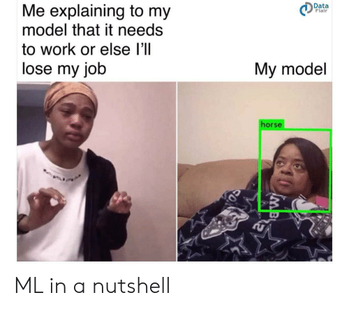 Work, Horse, and Job: Me explaining to my  model that it needs  Data  Flair  to work or else l'll  lose my job  My model  horse ML in a nutshell