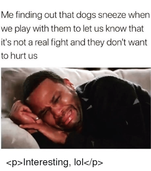 Dogs, Lol, and Fight: Me finding out that dogs sneeze when  we play with them to let us know that  it's not a real fight and they don't want  to hurt us <p>Interesting, lol</p>