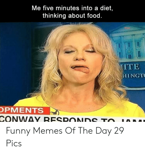 Conway, Food, and Funny: Me five minutes into a diet,  thinking about food.  MITE  HINGT  OPMENTS  CONWAY RESPONDS TO Funny Memes Of The Day 29 Pics