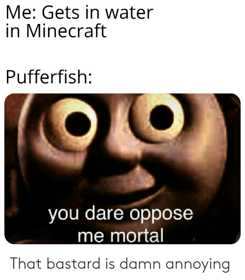 Minecraft, Water, and Annoying: Me: Gets in water  in Minecraft  Pufferfish:  you dare oppose  me mortal That bastard is damn annoying