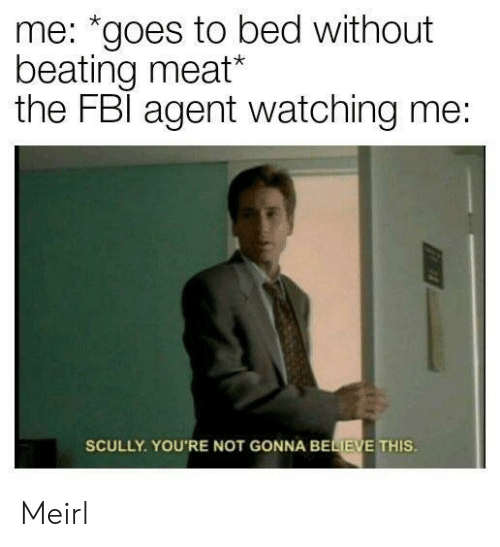 """Fbl: me: """"goes to bed without  beating meat*  the FBl agent watching me:  SCULLY. YOU'RE NOT GONNA BELIEVE THIS Meirl"""