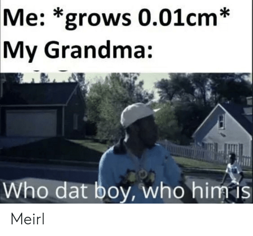 Grandma, MeIRL, and Boy: Me: *grows 0.01cm*  My Grandma:  Who dat boy, who him is Meirl