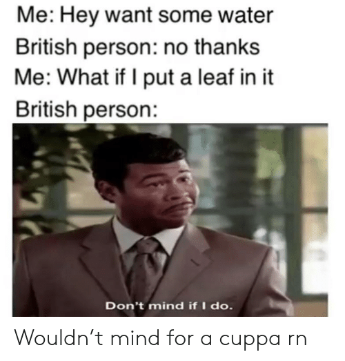 Water, British, and Mind: Me: Hey want some water  British person: no thanks  Me: What if I put a leaf in it  British person:  Don't mind if I do. Wouldn't mind for a cuppa rn